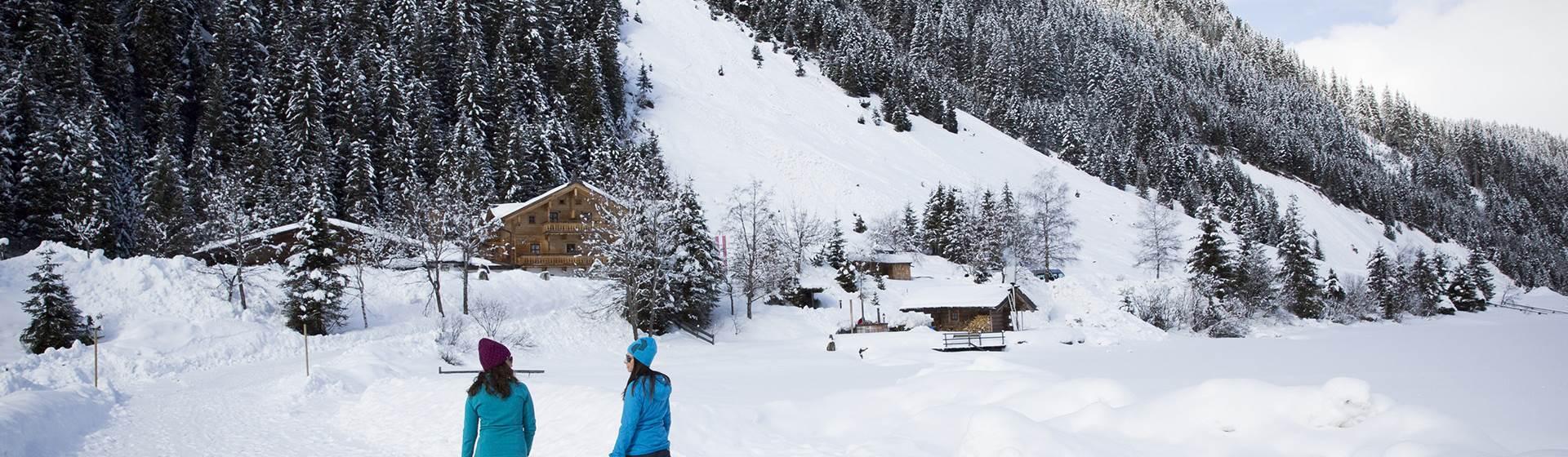 Beim-Winterwandern-die-Natur-geniessen